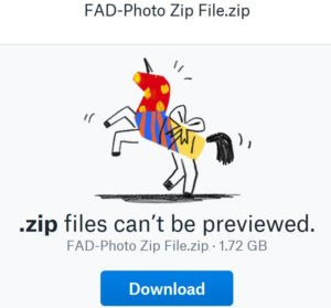 FAD-Photo Delivers Your Photo and Video Files via Dropbox for Super Fast Service